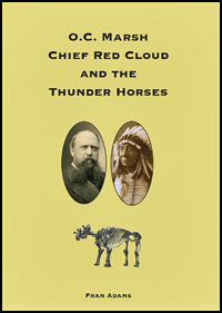 Chief Red Cloud book cover